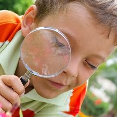 4 chasses au trésor pour aller en balade avec les enfants en ville, en forêt, à la plage ou au parc !