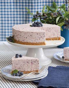 Blueberry frozen yogurt pie.
