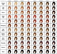 Loreal Hair Color Chart  Salon Decor    Loreal Hair