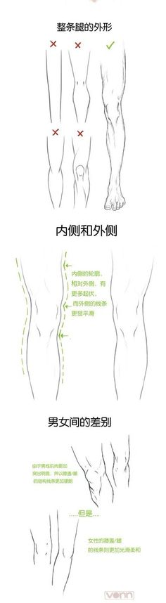 Drawing Human Anatomy legs male female muscles comparsion tutorial how not to 드림팩토리 그림공부봇 on - Learn six ways to get the most out of social media sites. From what to share, where to share and at what time to share your content. Drawing Legs, Body Drawing, Anatomy Drawing, Human Anatomy, Figure Drawing, Face Structure Drawing, Drawing Art, Drawing Skills, Drawing Lessons