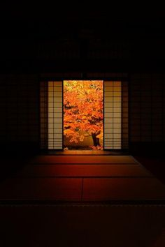 柚子と八朔 【Tumblr支社】 — lifeisverybeautiful: Unryu-in temple, Kyoto,...