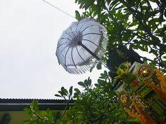12/12(月)バリ島ウブドのお天気は曇り。室内温度27.6℃、湿度86%。ザザーッと雨が降っていましたが、今は止んで空が明るくなってきてくれました。ニワトリも元気に鳴きだしました。