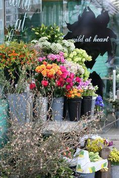 ♥ another quaint little shop