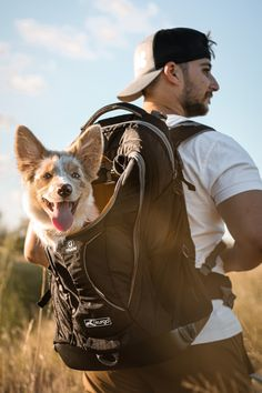 That feeling when you're watching the scenery roll by from the comfort of your G-Train on your human's back. Dog Backpack, Hiking Dogs, Commute To Work, Pet Travel, Dog Carrier, Pet Carriers, Bradley Mountain, Small Dogs, Dog Training