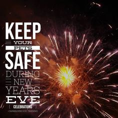 Today brings us to the end of 2016. We here at Capable K9s Dog Training would like to wish you all a healthy safe new year. While your making your plans to farewell this year please be sure to make sure your pet is safe and well contained. December 31 is the day of the year that most pets go missing.  Fireworks can spook an otherwise stable dog in to fleeing to escape the loud and sudden noises. If your not going to be home to supervise and comfort your pet during this time please ensure…