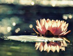 4 Mantras To Unlock Your Inner Goddess. Good advice for the soul. Better blog for college girls.