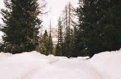 Verso le Tre cime di Lavaredo Un mesetto fa siamo andati a fare l'ultima escursione sulla neve. La neve che qui in pianura non si è fatta mai vedere quest'inverno l'ha fatto abbondamente in montagna e si vedeva bene dai muri di neve impressionanti ai bordi della strada.  Volevamo salire fin sulle tre cime di Lavaredo ma già all'altezza del lago di Antorno la strada era chiusa per la neve. Decidemmo di salire fin su a piedi ma l'incontro con una malga dove servivano polenta e selvaggina ci…