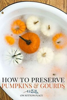 How To Preserve Pumpkins and Gourds for Fall decor | How to make real pumpkins last longer. How to keep pumpkins from rotting. #pumpkins #falldecortips