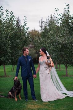 Bride and groom and their pups