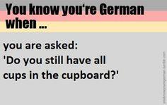 Hast du noch alle Tassen im Schrank =are you crazy?