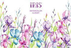 Watercolor Iris Clipart by Corner Croft on Creative Market
