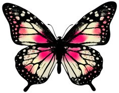 Large Pink Butterfly PNG Clip Art Image