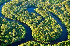 Pantanal - Mato Grosso do Sul