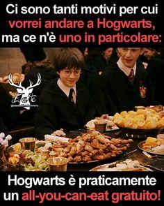 Harry Potter School, Harry Potter Tumblr, Dramione, Drarry, Dragon Trainer, Hogwarts, Funny Jokes, World Of Gumball, Fandoms