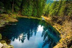 Tamolitch Pool ~ McKenzie River Trail ~ Oregon