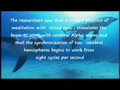 8 Hz THE HEALING SOUND OF DOLPHINS ~ http://riccamente.blogspot.com/ The sound emitted by the dolphins, has a frequency of 8 Hz inaudible by humans.  The sonic frequencies emitted from them, generate a field that brings the brain and biomolecular system to its balanced nature to 8 Hz.