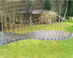 Willow Sculpture Whale's Den. This will fill in with greenery the same year they are planted.  This supplier is in the UK.