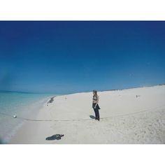 Great barrier reef!  Cairns es el sitio ideal para navegar y ver la gran barrera de coral. Aunque los tours son caros merece la pena. Michaelmas cay es una de las 7 colonias de coral mejor conservadas.  La naturaleza es increíble y hay que hacer lo posible para preservarla! #greatbarrierreef #coralisland #australianbeaches #queensland #australia #amazingplace #amazinglandscapes #michaelmascay #hacialaaventura #workingholidayaustralia by hacia_la_aventura http://ift.tt/1UokkV2