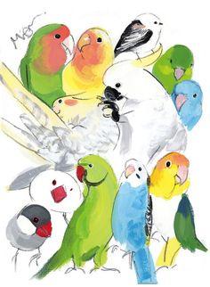 Embedded Cartoon Birds, Funny Birds, Cute Birds, Cute Animal Drawings, Bird Drawings, Bird Mom, Funny Parrots, Bird Artwork, Watercolor Bird
