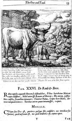 26. De rana et bove (1687), illustrated by Francis Barlow