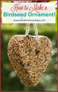 How to Make a Bird Seed Ornament - Just five main ingredients in this recipe. After a couple of birdseed ornament fails with peanut butter, I'm excited about this easy recipe that has corn syrup and gelatin instead! I can't wait to watch birds out our window with the kids! I think these would be lovely neighbor gift ideas as well.
