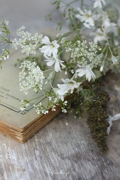 Simple & Simply Lovely ~sandra de~ My Romantlc Heart~