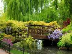 Asian Garden Bridge From: uploaded by user, no url Asian Garden, Beautiful Landscapes, Beautiful Gardens, Regents Park London, London Places, All Nature, Spring Garden, Garden Bridge, Lush