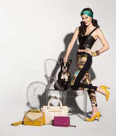 #3i #fashion #bags #dog #shoes