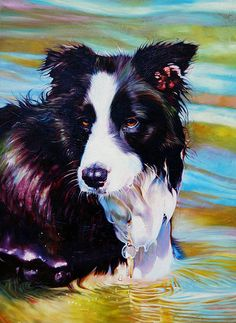 Dogs Painting - Buddy Border Collie by Kelly McNeil