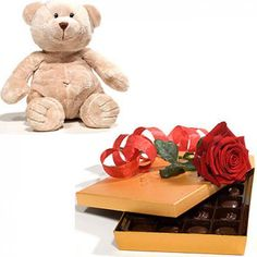 Classic Teddy Romance Set to Switzerland