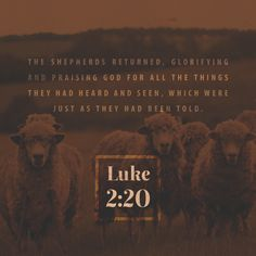 """""""And the shepherds returned, glorifying and praising God for all the things that they had heard and seen, as it was told unto them."""" Luke 2:20 KJV http://bible.com/1/luk.2.20.kjv"""