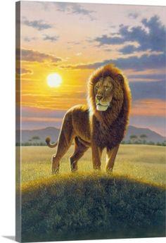 Chris Hiett Premium Thick-Wrap Canvas Wall Art Print entitled Lion, None