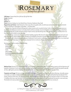 Free BOS Page on the Magical and Medicinal Uses of Rosemary