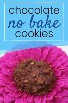 These chocolate no bake cookies are the perfect no bake cookie! The flavor is amazing but there is NO peanut butter or other nut butter. This is one of my favorite allergy friendly cookies because they are nut, egg, and gluten free!  It is also nice to make these in the summer because you don't have to turn on the oven and heat up the house! #cookies #nobake #summer #chocolate #glutenfree #nutfree #eggfree Chocolate No Bake Cookies, Best Chocolate Chip Cookie, Chocolate Recipes, Skillet Cornbread, Sweet Cornbread, Unique Desserts, Fun Desserts, Honey Recipes, Baking Recipes