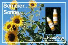 Hautpflege für den Sommer. After-Sun. Was tun bei Sonnenbrand? Lippenbalsam. Erfrischungsspray. After Sun, Vitamin D, Overnight Oats, Health, Skincare Routine, Sun, Recipies, Health Care, Salud