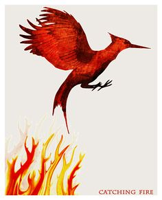 The Hunger Games - Catching Fire Poster Print - 11x14. $19.00, via Etsy.