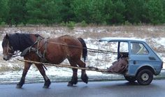 8 Unbelievable Tips: Car Wheels Furniture Diy old car wheels dads.Old Car Wheels Autos car wheels drawing. Funny Horse Pictures, Funny Horses, Horse Photos, Car Pictures, Funny Animal Memes, Funny Animals, Funny Lion, Redneck Humor, Horse And Buggy