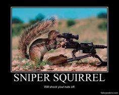 Sniper Squirrel - Demotivational Poster