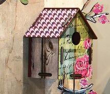 Pretty home for pretty bird