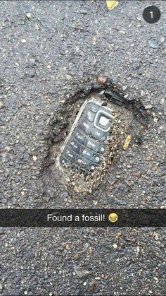 found -Fossil found! found - 30 Try Not To Laugh At These Hilarious Meme Pictures Funny Memes - Funny animals have always been an internet sensation. They've got what it takes to make us laugh, especially when . Funny Shit, Crazy Funny Memes, Really Funny Memes, Stupid Memes, Funny Relatable Memes, Haha Funny, Funny Posts, Funny Stuff, Funny Work