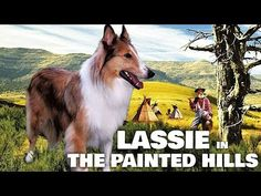 Lassie - The Painted Hills (Western Family Movie, English, Full Length) free full movies on youtube - YouTube Kid Movies, Family Movies, Painted Hills, Western Movies, Christmas Movies, Four Legged, Feature Film, Westerns, Novels