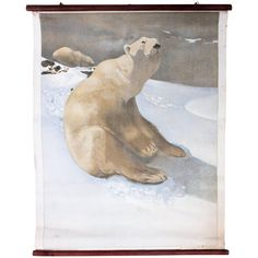 Wall Chart, Icebear, Wandtafelwerk, Carl Ederer, 1907 For Sale Vintage Furniture, Cool Furniture, Modern Furniture, Polar Bear, Poster, Mid Century, Wall Decor, Chart, Prints