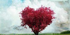 Ey Aşk… « Kadran Dergi