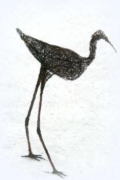 Risulintu, koipeliini Bird, Birds