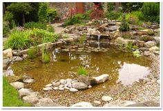 Our Garden Services Outdoor Ponds, Ponds Backyard, Garden Ponds, Pond Landscaping, Landscaping With Rocks, Fish Pond Gardens, Water Gardens, Garden Water, Farm Pond