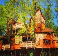 Tree house - and THEN some. 10 tree houses you can only dream of Future House, My House, Kids House, Alnwick Castle, Alnwick Treehouse, Beautiful Homes, Beautiful Places, House Beautiful, Cool Tree Houses