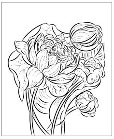 Nicole's Free Coloring Pages Flower Coloring Pages, Free Coloring Pages, Winter Princess, Mysterious Girl, Modern Princess, Baby Goats, Yellow Leaves, Birds 2, Red Berries