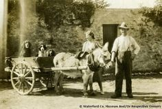 Here are some dogs hitching a ride in a donkey and cart at the turn of the last century in Waterford!