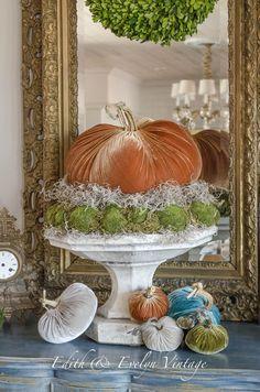 It's velvet pumpkin weather! More decor ideas preschool Velvet Pumpkin Weather Thanksgiving Decorations, Seasonal Decor, Holiday Decor, Harvest Decorations, Thanksgiving Crafts, Velvet Pumpkins, Fall Pumpkins, Fabric Pumpkins, Autumn Decorating