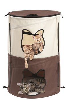 Portable Pop-Up Cat Condo House with 2 Levels * Special cat product just for you. See it now! : Cat condo